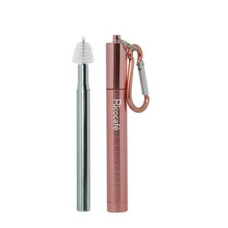 2 in 1 Collapsible Stainless Steel Straw